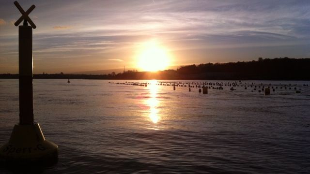 Geniessenschaft Kieler Meeresfarm im Sonnenuntergang